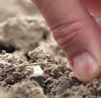 Уплотнение грунта пневматическими трамбовками как посчитать объем