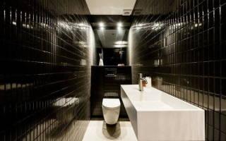 Дизайн туалета фото в квартире без ванной