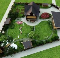 Дизайн участка растениями