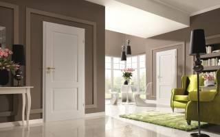Дизайн темные двери светлый пол